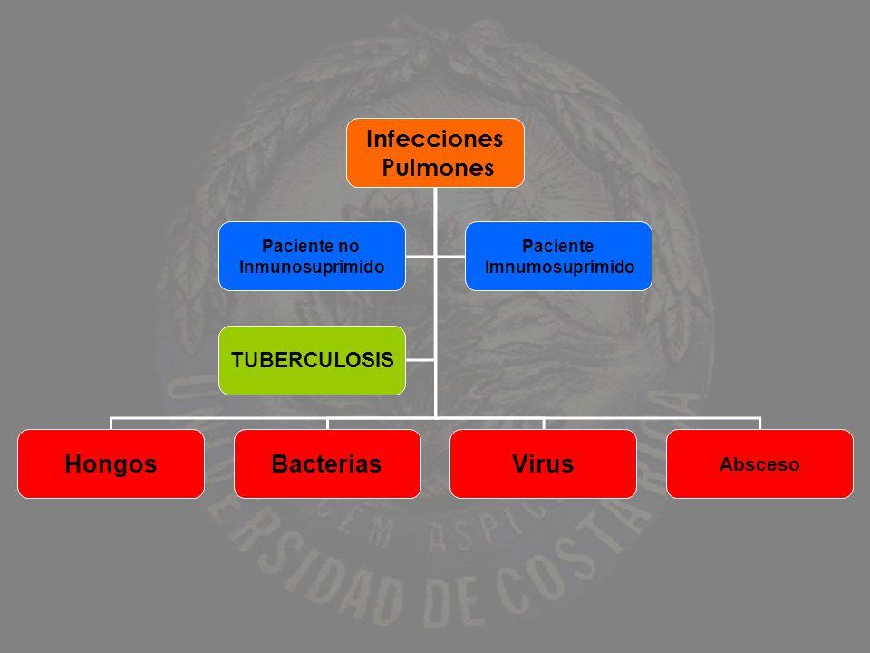 Infecciones Pulmones HongosBacteriasVirus Paciente no Inmunosuprimido Paciente Imnumosuprimido Absceso TUBERCULOSIS