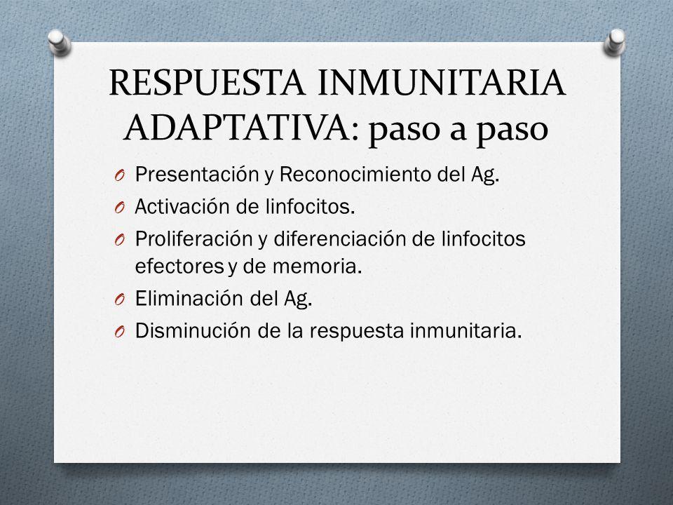 RESPUESTA INMUNITARIA ADAPTATIVA: paso a paso O Presentación y Reconocimiento del Ag. O Activación de linfocitos. O Proliferación y diferenciación de