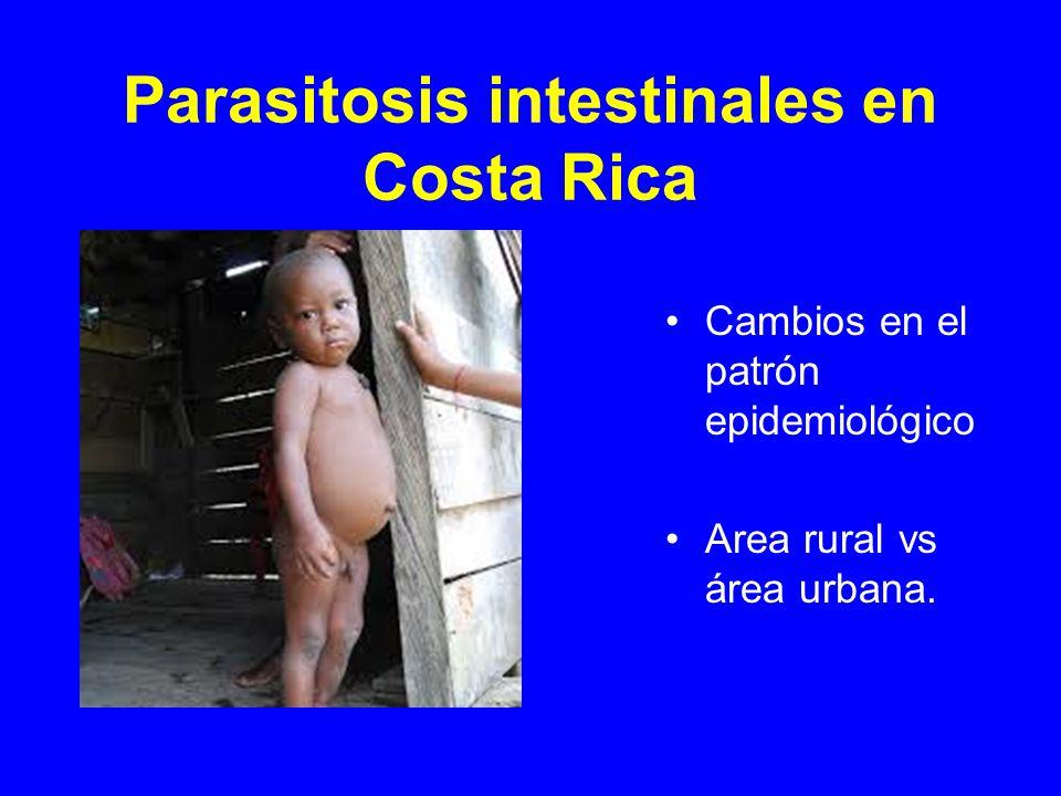 Parasitosis intestinales Cuáles hay que recordar.