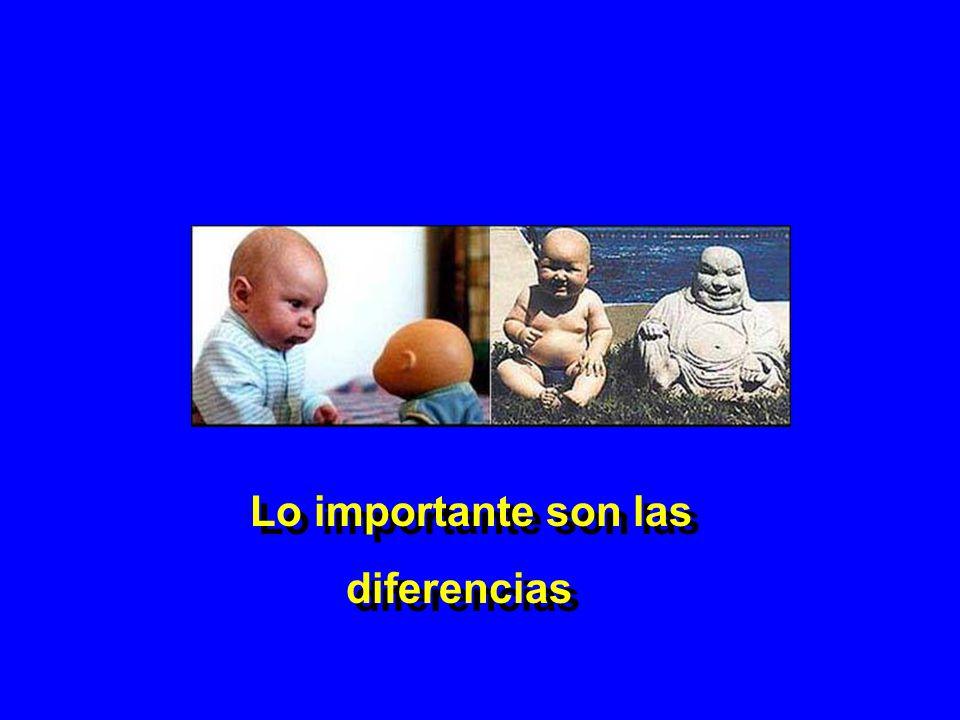 Lo importante son las diferencias Lo importante son las diferencias