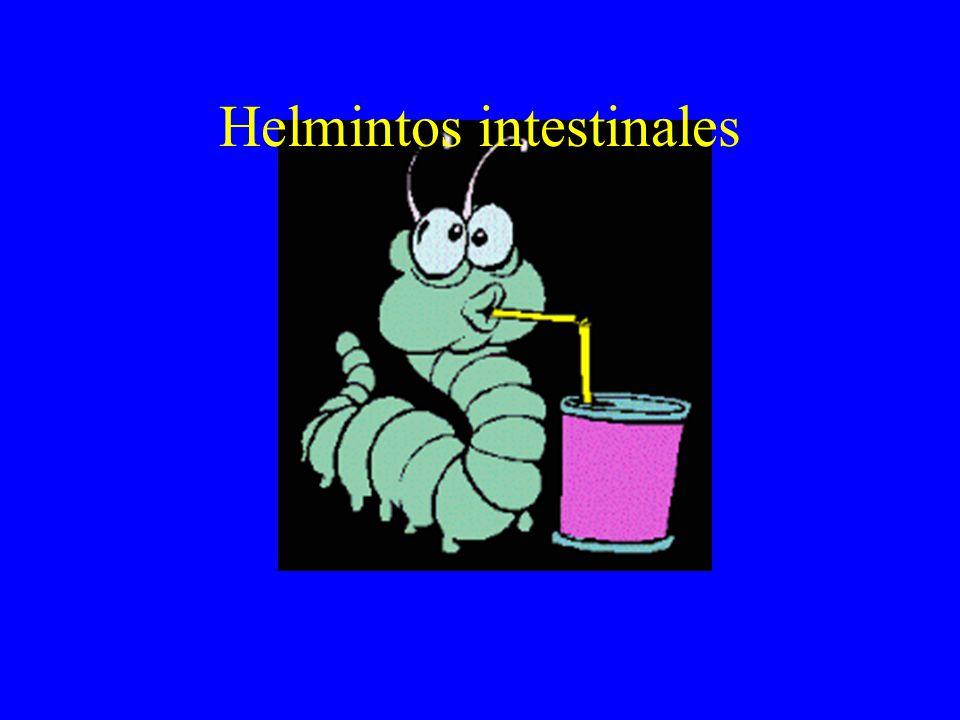 Enterobiasis (Oxiuriasis) Signo clave: PRURITO ANAL Otros síntomas: Dolor abdominal, tenesmo, prurito nasal, expulsión de parásitos, insomnio, intranquilidad, enuresis, bruxismo, vulvitis-salpingitis- peritonitis.