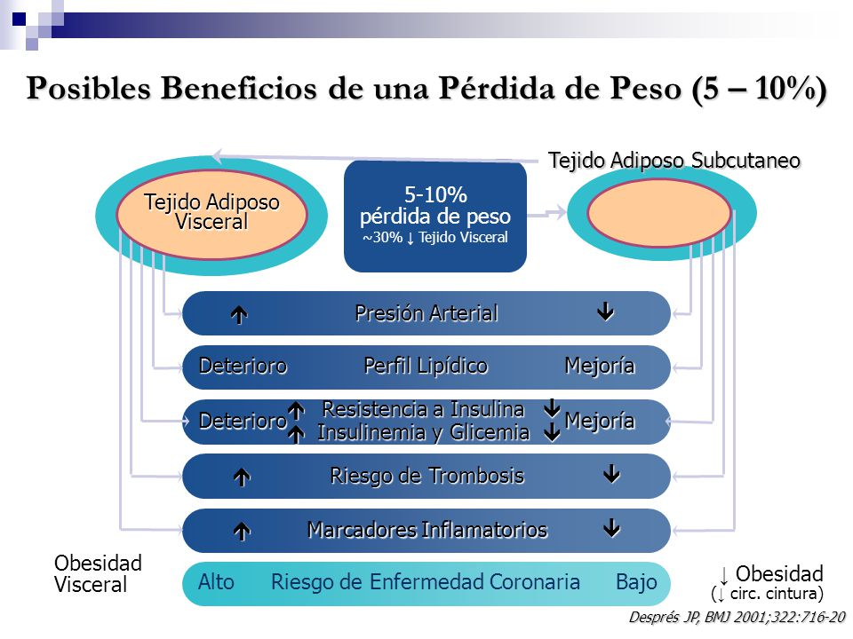Posibles Beneficios de una Pérdida de Peso (5 – 10%) Tejido Adiposo Subcutaneo 5-10% pérdida de peso ~30% Tejido Visceral ObesidadVisceral Obesidad (