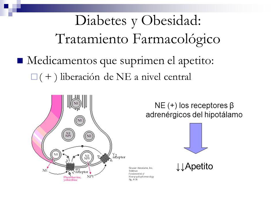 Diabetes y Obesidad: Tratamiento Farmacológico Medicamentos que suprimen el apetito: ( + ) liberación de NE a nivel central NE (+) los receptores β ad