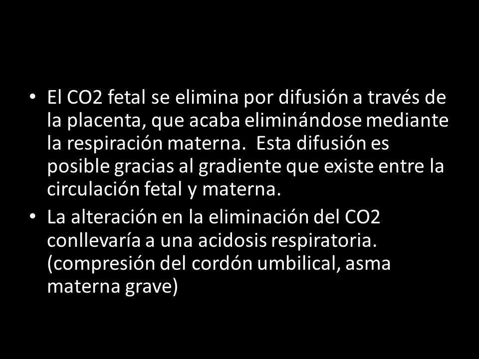 El CO2 fetal se elimina por difusión a través de la placenta, que acaba eliminándose mediante la respiración materna.