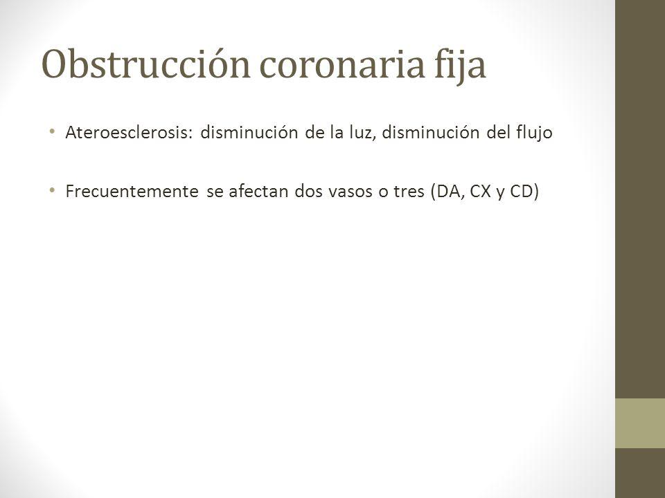 Obstrucción coronaria fija Ateroesclerosis: disminución de la luz, disminución del flujo Frecuentemente se afectan dos vasos o tres (DA, CX y CD)