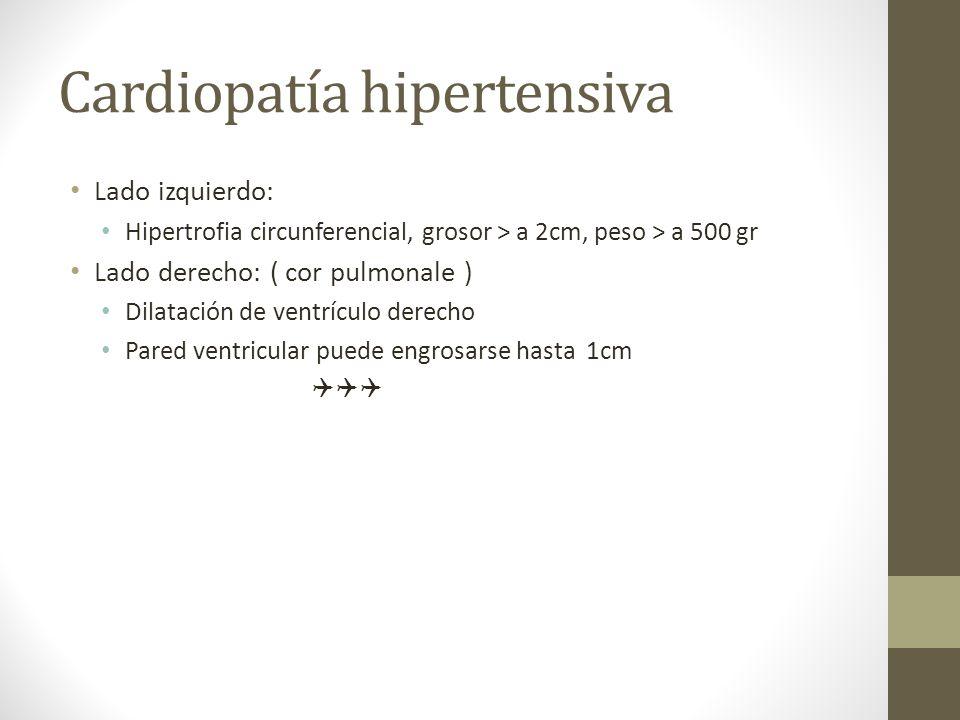 Cardiopatía hipertensiva Lado izquierdo: Hipertrofia circunferencial, grosor > a 2cm, peso > a 500 gr Lado derecho: ( cor pulmonale ) Dilatación de ventrículo derecho Pared ventricular puede engrosarse hasta 1cm
