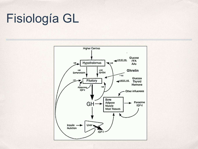 Fisiología GL