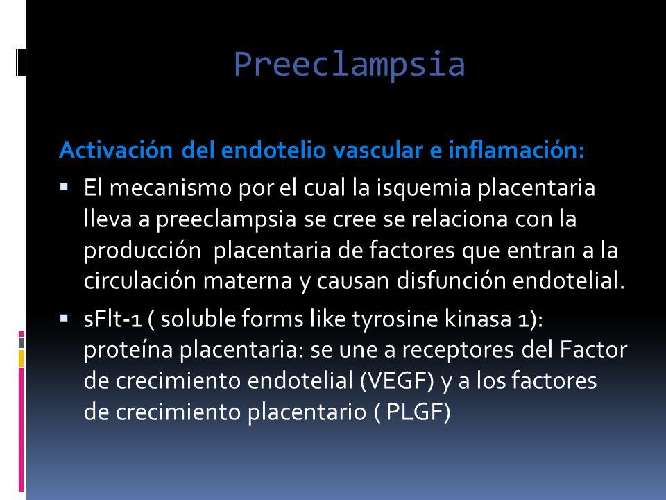 Preeclampsia Activación del endotelio vascular e inflamación: El mecanismo por el cual la isquemia placentaria lleva a preeclampsia se cree se relacio