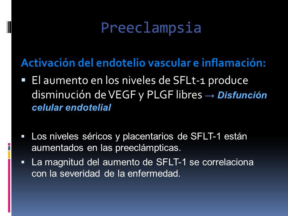 Preeclampsia Activación del endotelio vascular e inflamación: El aumento en los niveles de SFLt-1 produce disminución de VEGF y PLGF libres Disfunción
