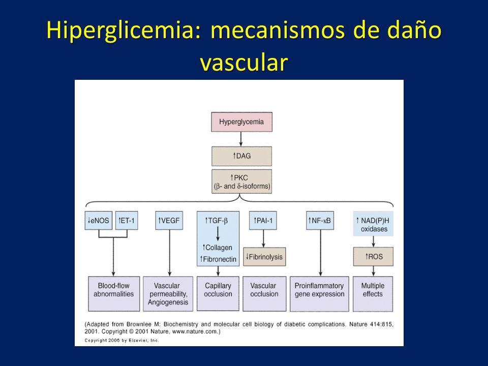 Hiperglicemia: mecanismos de daño vascular