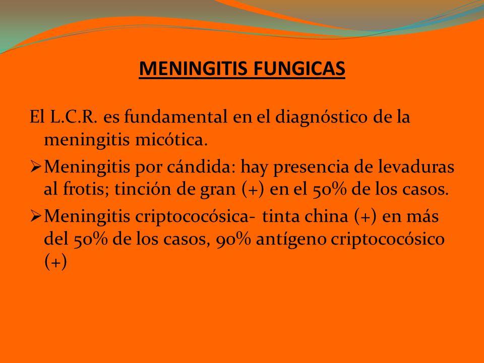 MENINGITIS FUNGICAS El L.C.R. es fundamental en el diagnóstico de la meningitis micótica. Meningitis por cándida: hay presencia de levaduras al frotis
