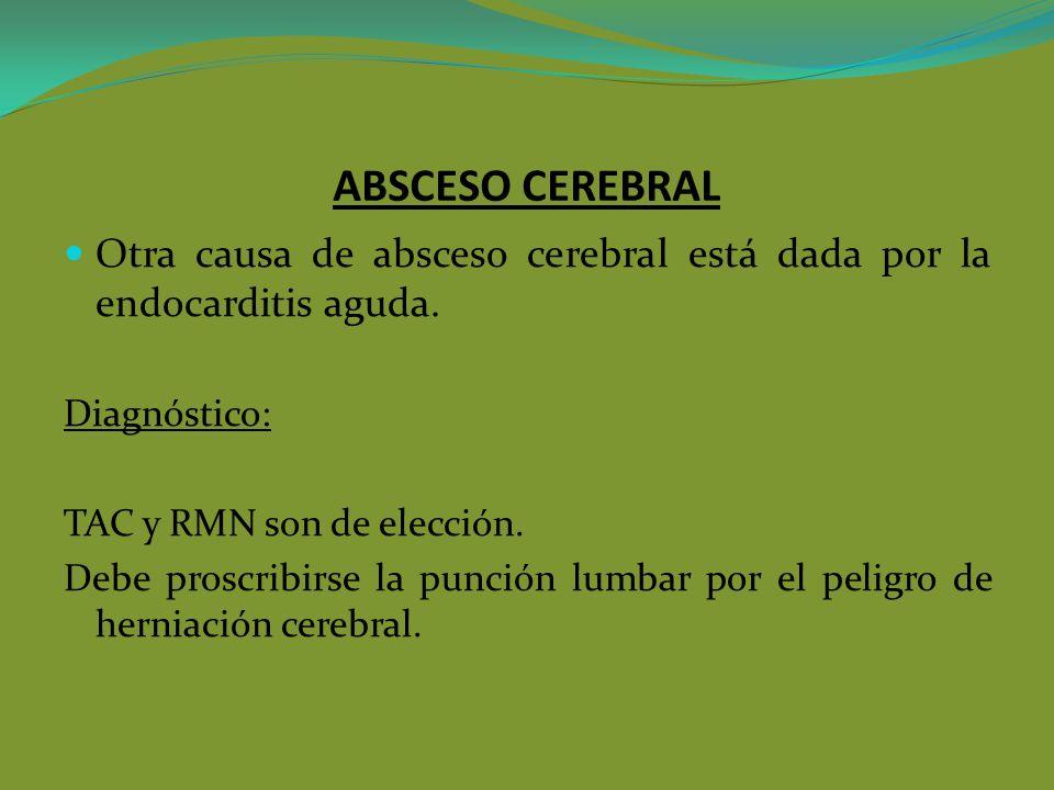 ABSCESO CEREBRAL Otra causa de absceso cerebral está dada por la endocarditis aguda. Diagnóstico: TAC y RMN son de elección. Debe proscribirse la punc