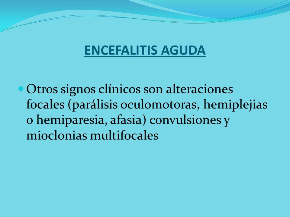 ENCEFALITIS AGUDA Otros signos clínicos son alteraciones focales (parálisis oculomotoras, hemiplejias o hemiparesia, afasia) convulsiones y mioclonias