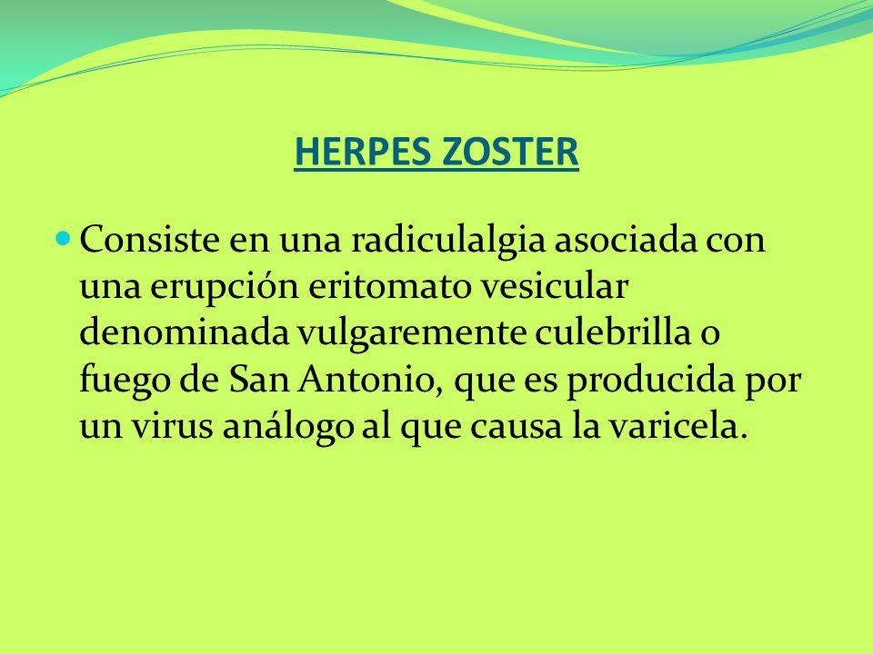 HERPES ZOSTER Consiste en una radiculalgia asociada con una erupción eritomato vesicular denominada vulgaremente culebrilla o fuego de San Antonio, qu
