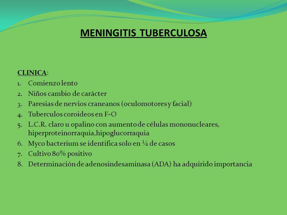 MENINGITIS TUBERCULOSA TRATAMIENTO: 3 drogas clásicas 1.