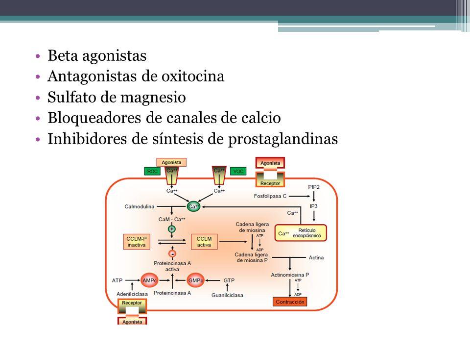 Beta agonistas Antagonistas de oxitocina Sulfato de magnesio Bloqueadores de canales de calcio Inhibidores de síntesis de prostaglandinas