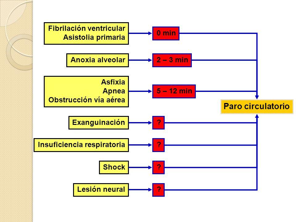 Fibrilación ventricular Asistolia primaria Anoxia alveolar Asfixia Apnea Obstrucción vía aérea Exanguinación Insuficiencia respiratoria Shock Lesión n