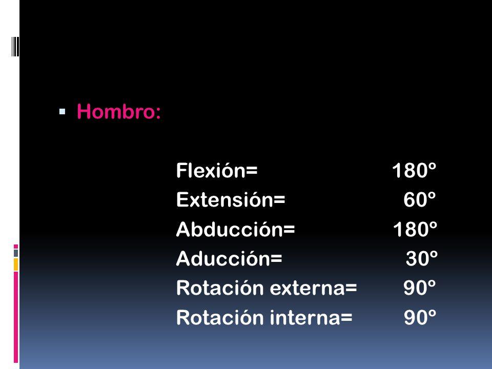 Hombro: Flexión= 180º Extensión= 60º Abducción= 180º Aducción= 30º Rotación externa= 90º Rotación interna= 90º