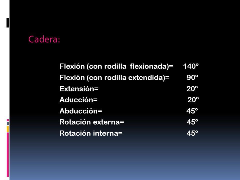 Cadera: Flexión (con rodilla flexionada)= 140º Flexión (con rodilla extendida)= 90º Extensión= 20º Aducción= 20º Abducción= 45º Rotación externa= 45º