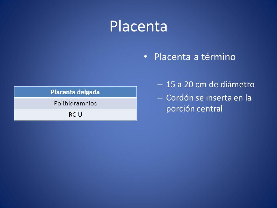 Placenta Placenta delgada Polihidramnios RCIU Placenta a término – 15 a 20 cm de diámetro – Cordón se inserta en la porción central