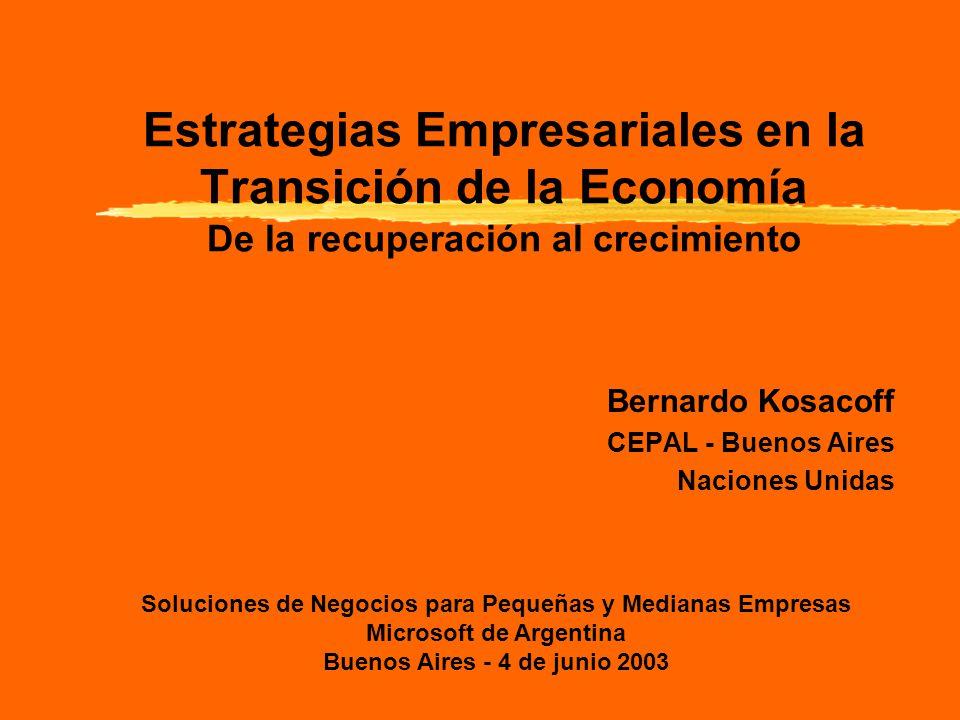 Estrategias Empresariales en la Transición de la Economía De la recuperación al crecimiento Bernardo Kosacoff CEPAL - Buenos Aires Naciones Unidas Soluciones de Negocios para Pequeñas y Medianas Empresas Microsoft de Argentina Buenos Aires - 4 de junio 2003