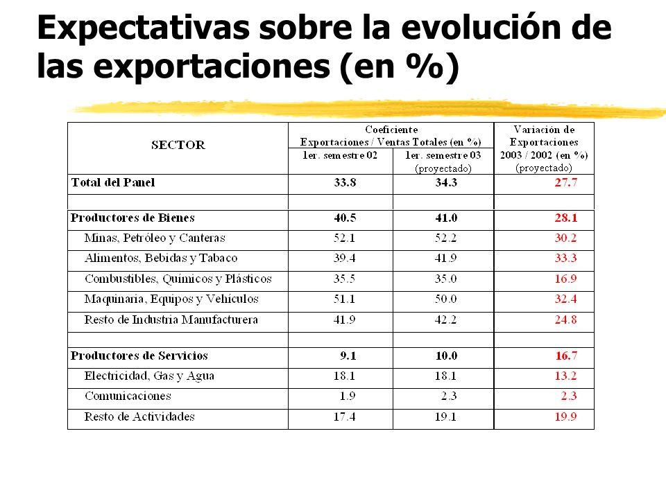 Importancia y evolución de las exportaciones (en %)