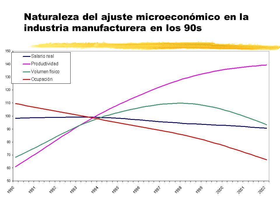 Naturaleza del ajuste microeconómico en la industria manufacturera en los 90s