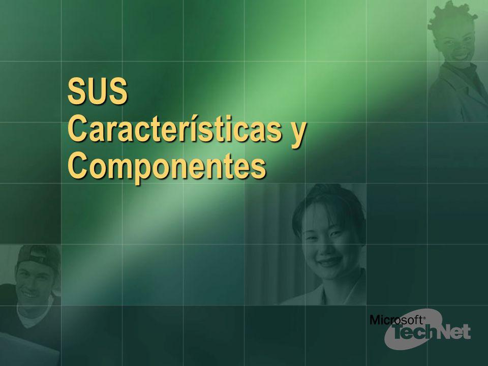 SUS Características y Componentes
