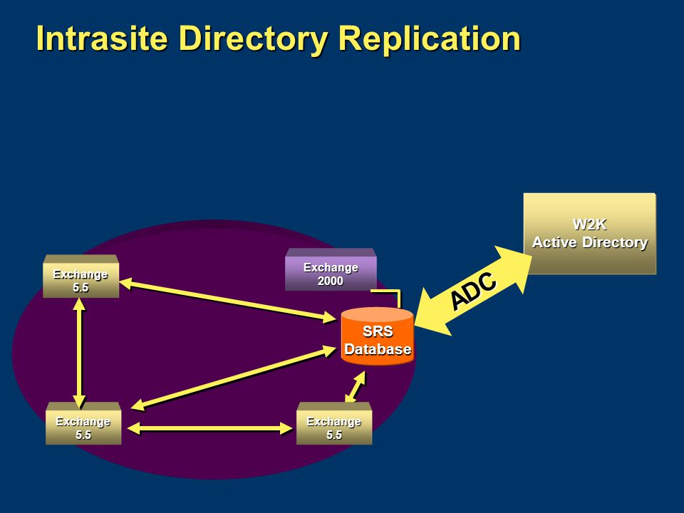 Exchange 5.5 Exchange 2000 Intrasite Directory Replication Exchange 5.5 SRS Database ADC W2K Active Directory Exchange 5.5