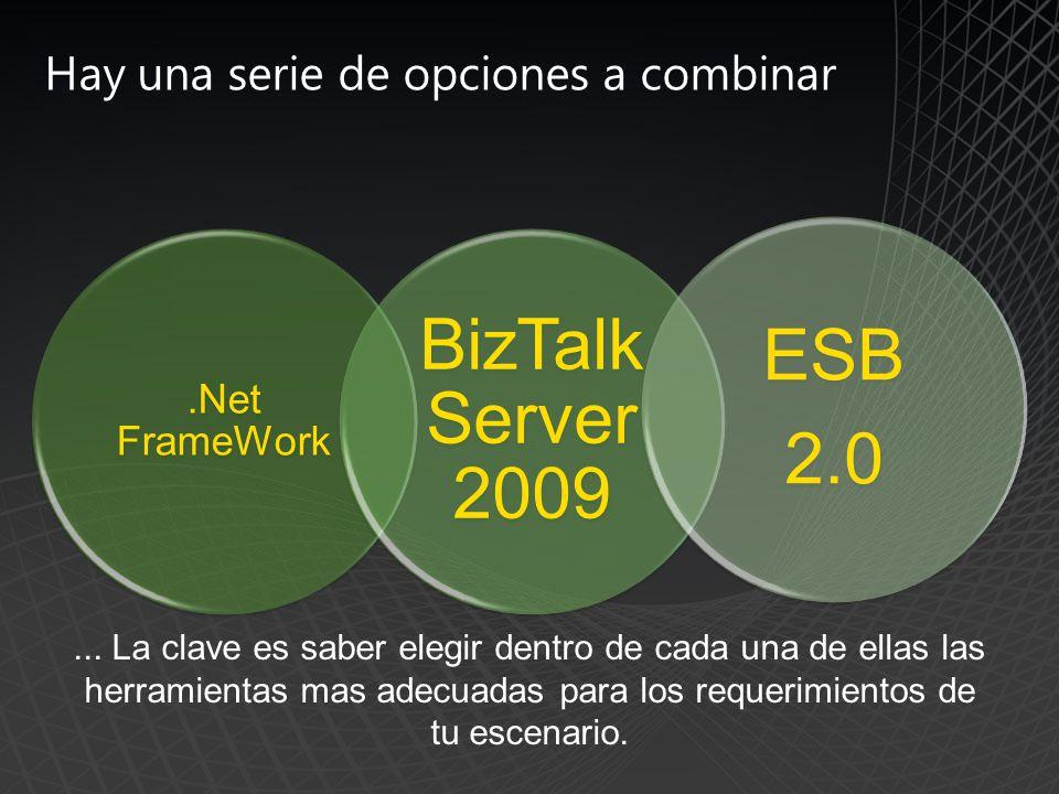 .Net FrameWork BizTalk Server 2009 ESB 2.0 Hay una serie de opciones a combinar...