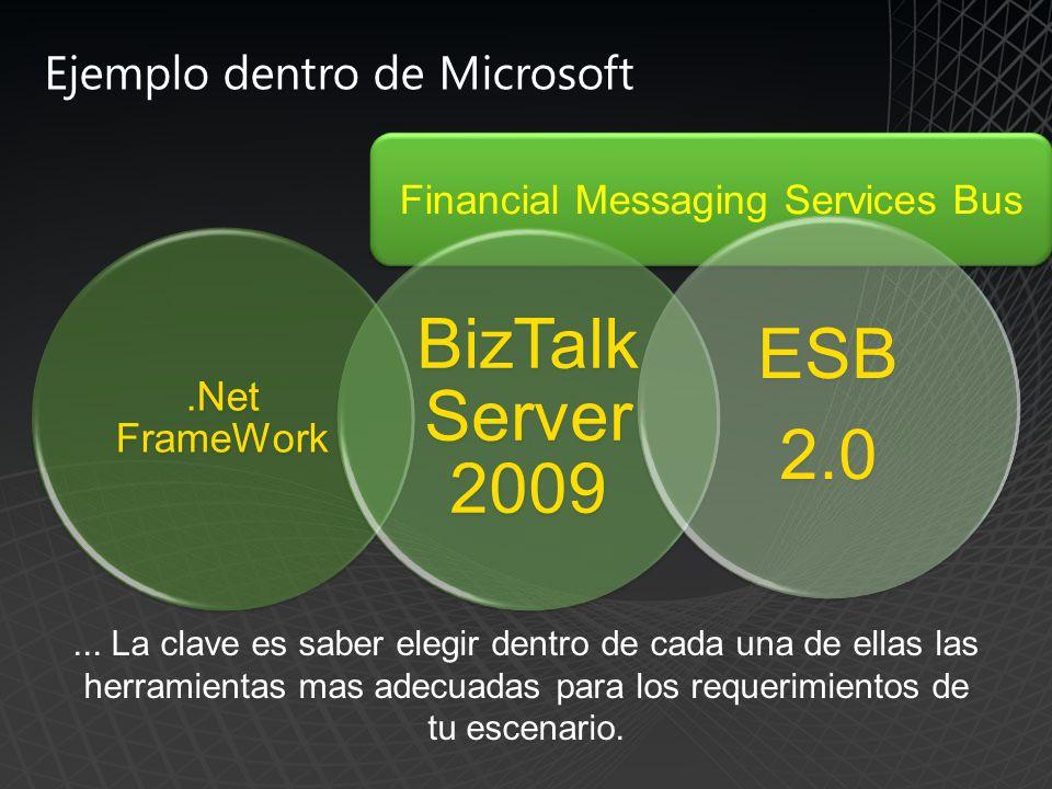 Financial Messaging Services Bus.Net FrameWork BizTalk Server 2009 ESB 2.0 Ejemplo dentro de Microsoft...
