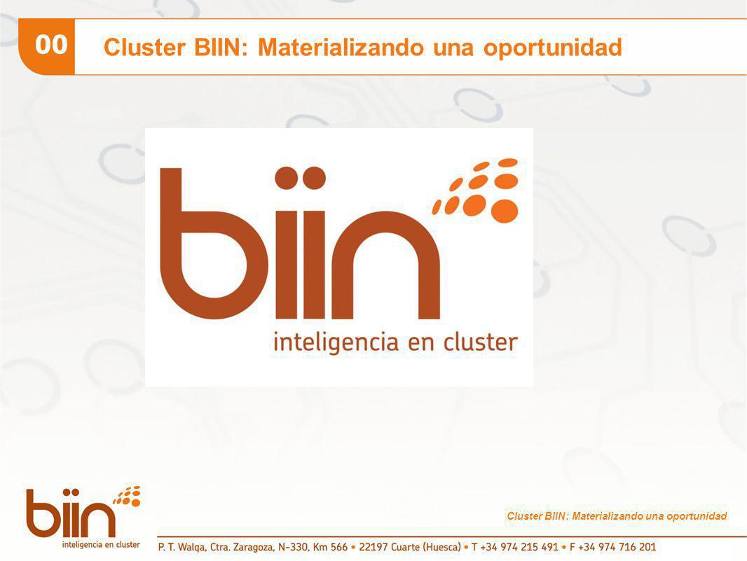 Cluster BIIN: Materializando una oportunidad 00 Cluster BIIN: Materializando una oportunidad