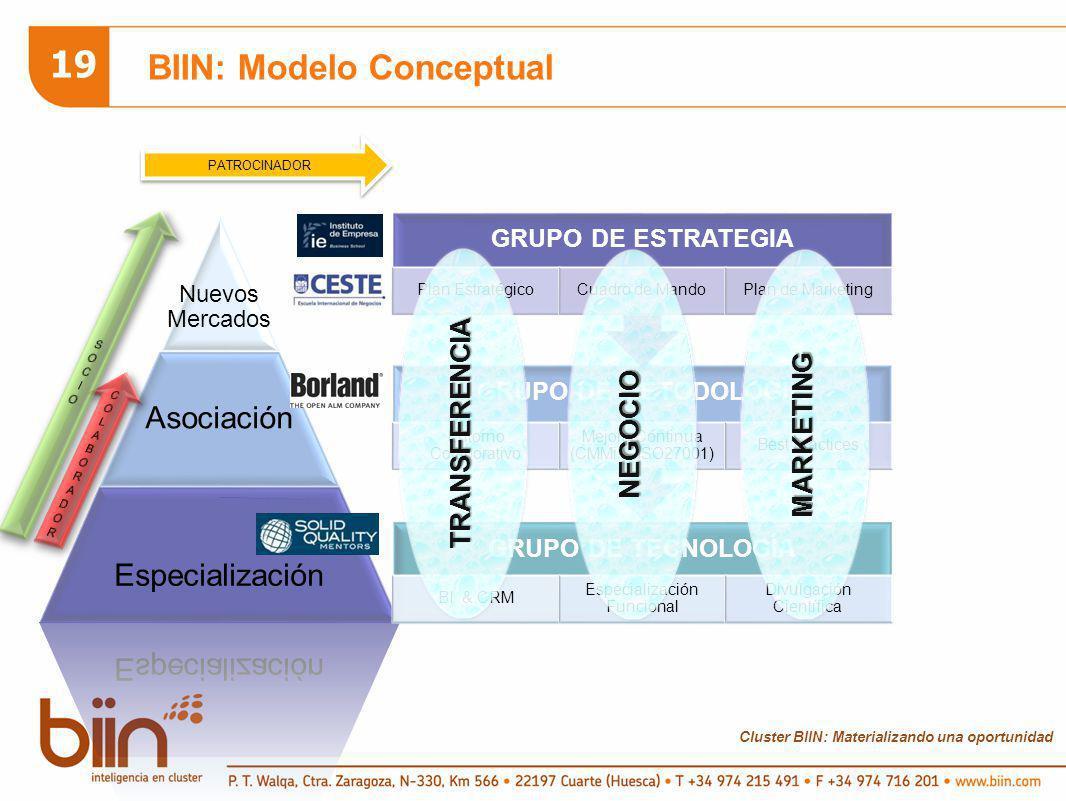 Cluster BIIN: Materializando una oportunidad 19 BIIN: Modelo Conceptual Nuevos Mercados Asociación Especialización GRUPO DE TECNOLOGÍA BI & CRM Especi