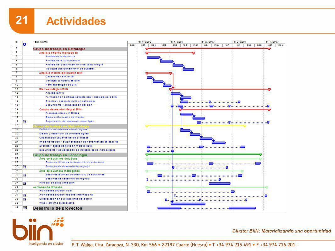 Cluster BIIN: Materializando una oportunidad 21 Actividades