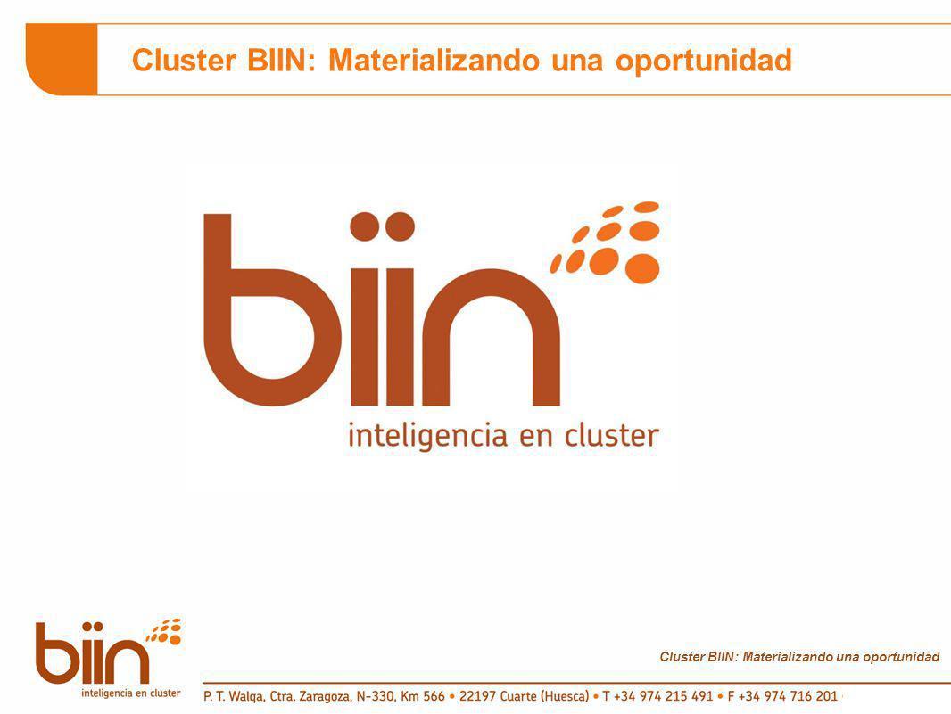 Cluster BIIN: Materializando una oportunidad