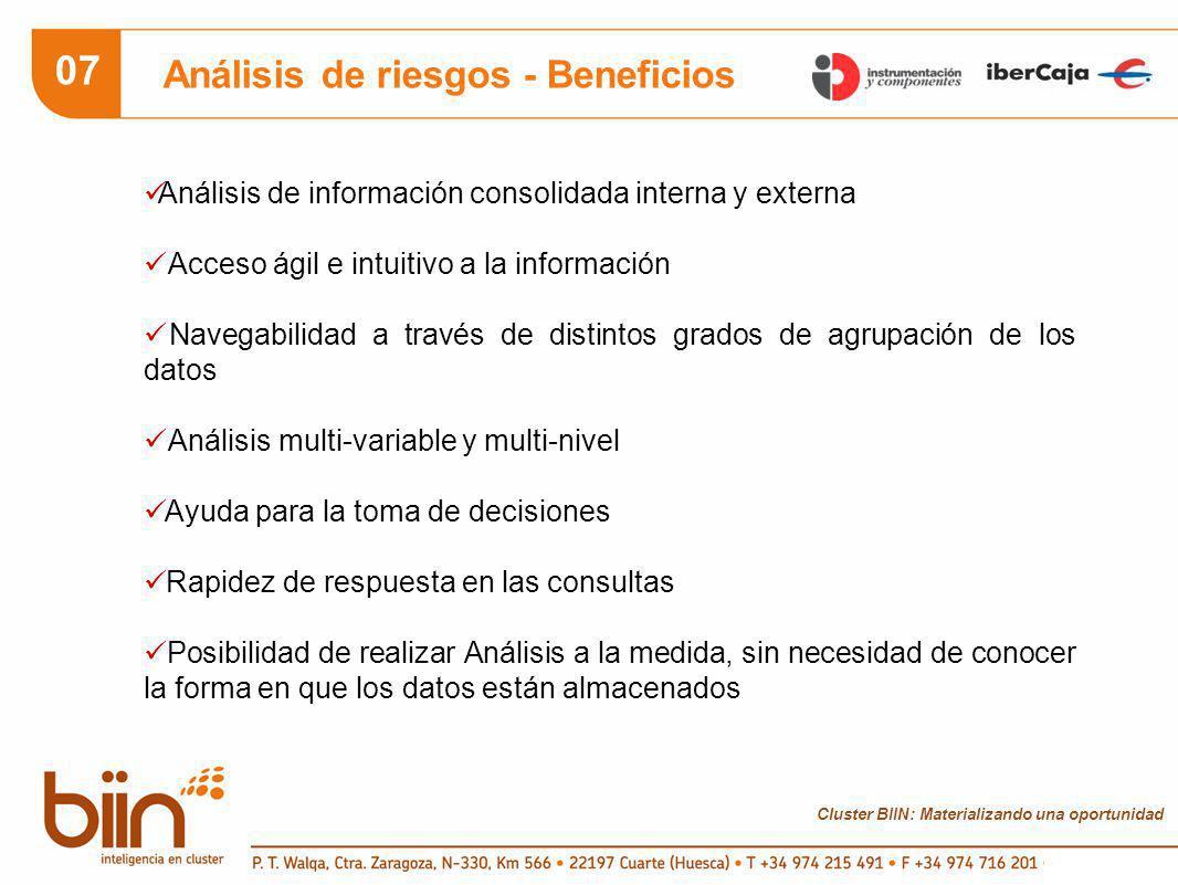 Cluster BIIN: Materializando una oportunidad 07 Análisis de riesgos - Beneficios Análisis de información consolidada interna y externa Acceso ágil e intuitivo a la información Navegabilidad a través de distintos grados de agrupación de los datos Análisis multi-variable y multi-nivel Ayuda para la toma de decisiones Rapidez de respuesta en las consultas Posibilidad de realizar Análisis a la medida, sin necesidad de conocer la forma en que los datos están almacenados