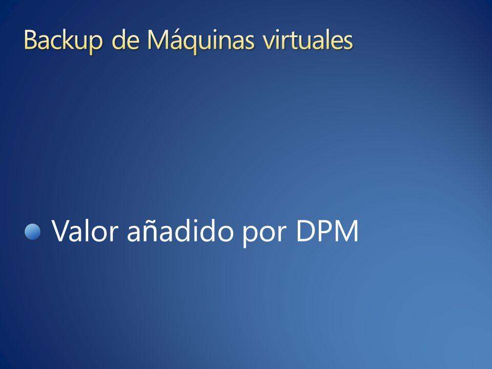 Valor a ñ adido por DPM