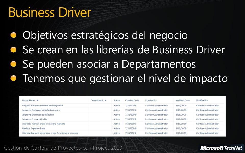 Gestión de Cartera de Proyectos con Project 2010 Business Driver