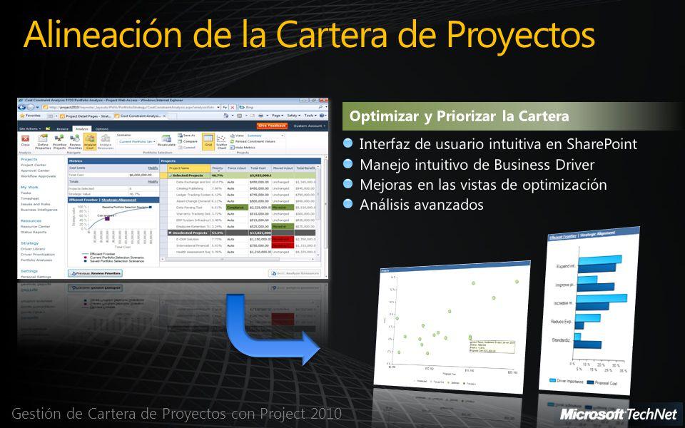 Gestión de Cartera de Proyectos con Project 2010 Alineación de la Cartera de Proyectos