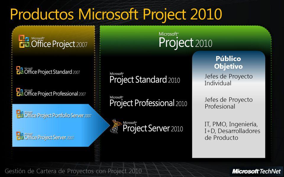 Gestión de Cartera de Proyectos con Project 2010 Productos Microsoft Project 2010 Público Objetivo Jefes de Proyecto Individual Jefes de Proyecto Prof