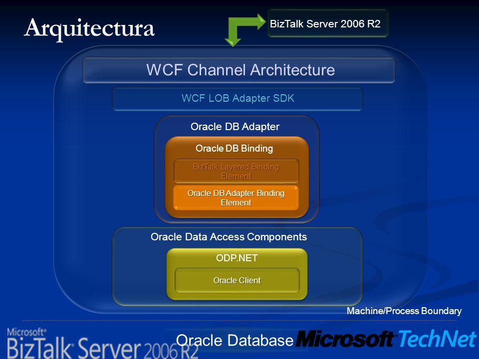 Oracle Database BizTalk Layered Binding Element Oracle DB Adapter Binding Element Oracle DB Binding Oracle DB Adapter WCF LOB Adapter SDK WCF Channel