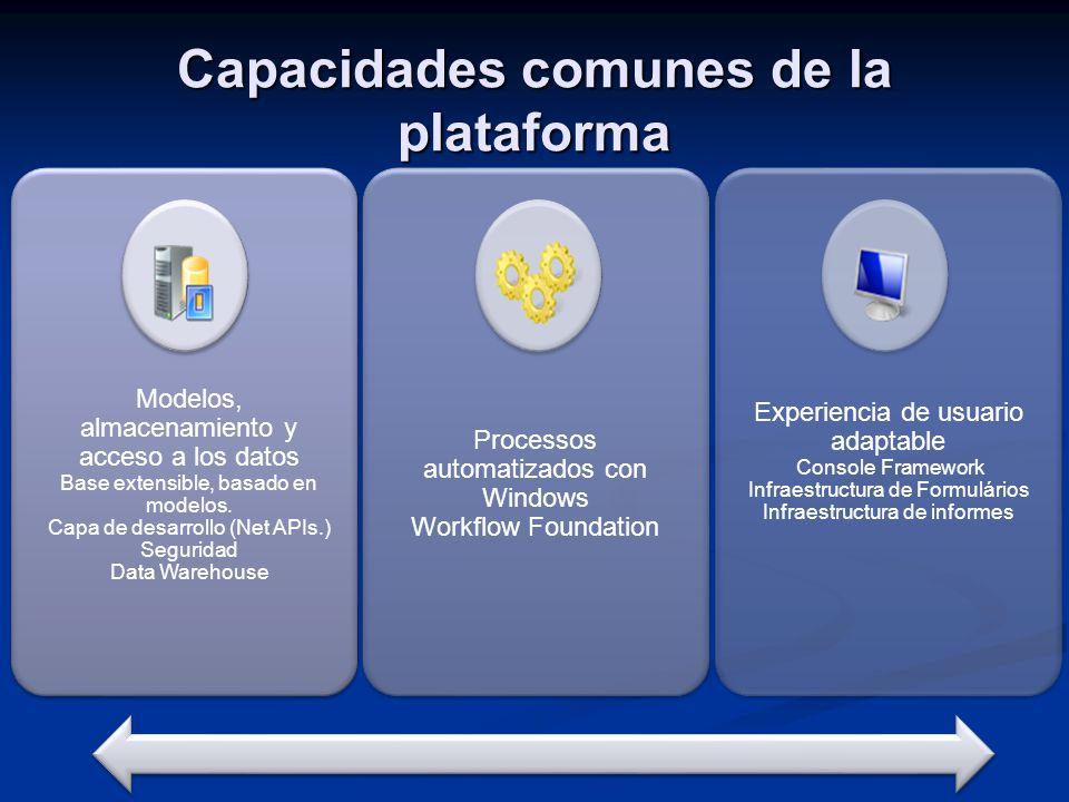 Modelos, almacenamiento y acceso a los datos Base extensible, basado en modelos. Capa de desarrollo (Net APIs.) Seguridad Data Warehouse Processos aut