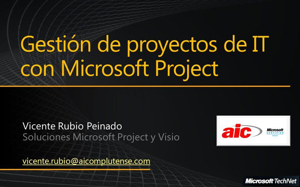 Nuestra empresa Gestión de proyectos de IT con Microsoft Project