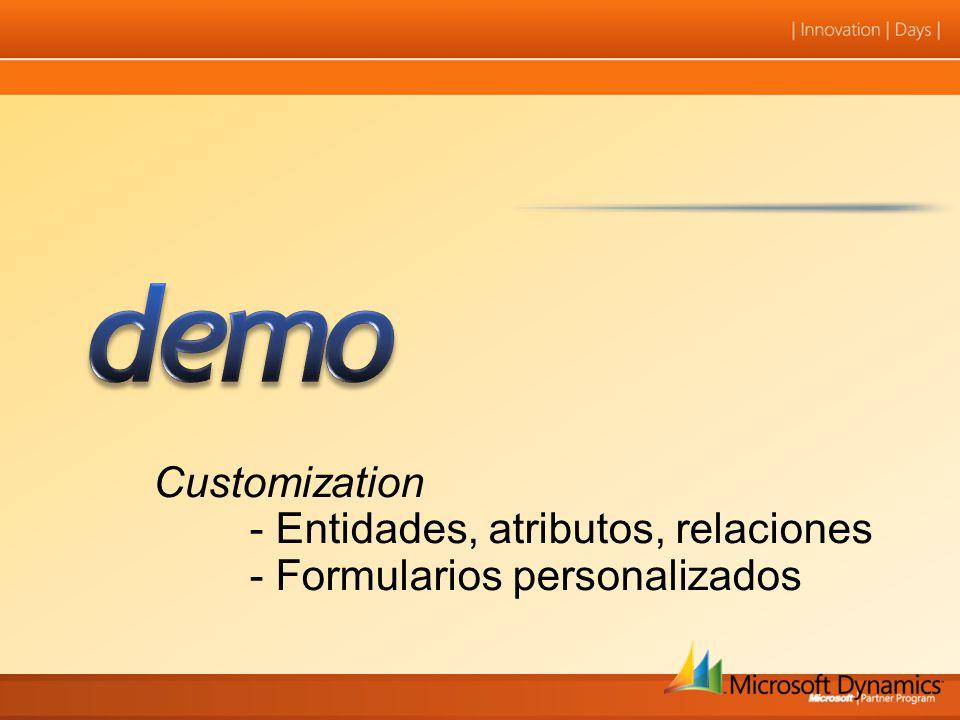 Customization - Entidades, atributos, relaciones - Formularios personalizados