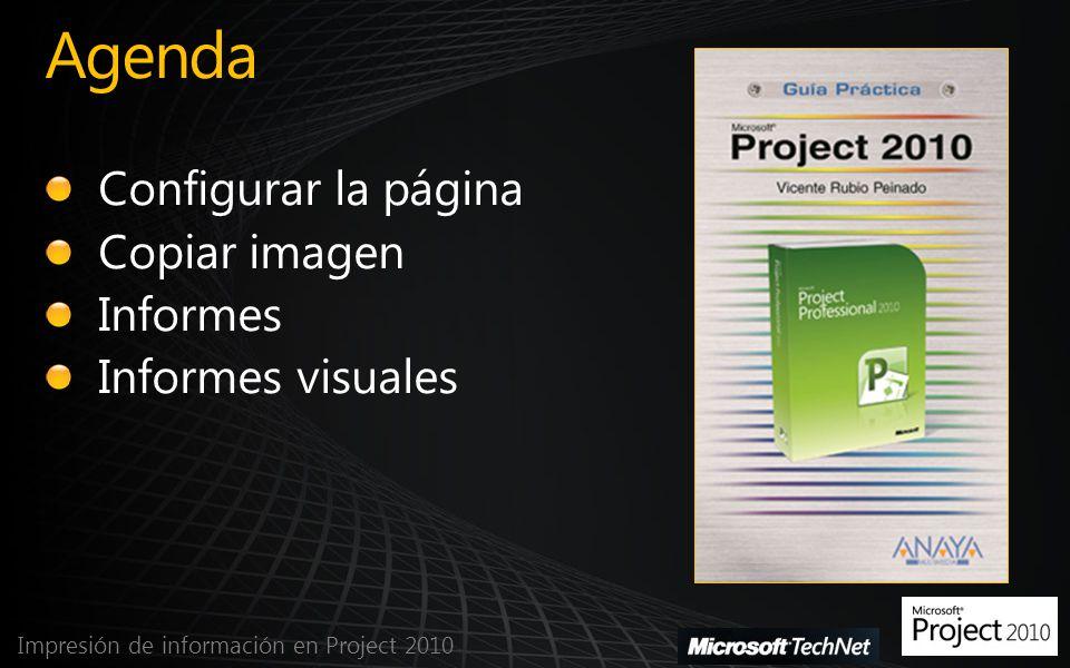 Informe visual en Excel Impresión de información en Project 2010
