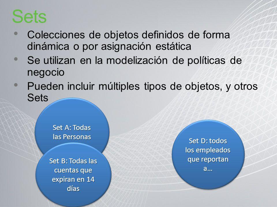 Sets Colecciones de objetos definidos de forma dinámica o por asignación estática Se utilizan en la modelización de políticas de negocio Pueden inclui