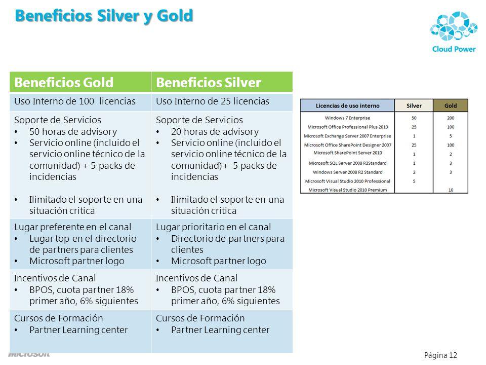 Página 12 Beneficios GoldBeneficios Silver Uso Interno de 100 licenciasUso Interno de 25 licencias Soporte de Servicios 50 horas de advisory Servicio