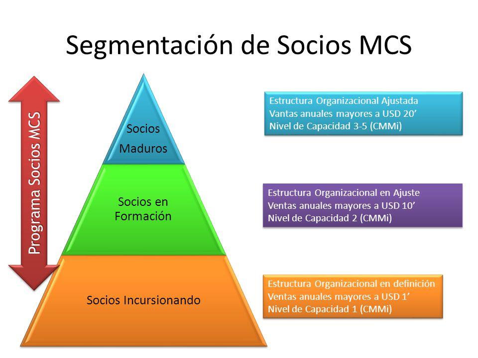 Segmentación de Socios MCS Socios Maduros Socios en Formación Socios Incursionando Estructura Organizacional Ajustada Vantas anuales mayores a USD 20