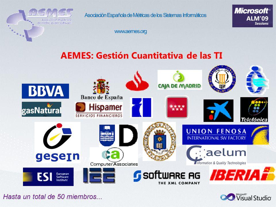 Hasta un total de 50 miembros... AEMES: Gestión Cuantitativa de las TI