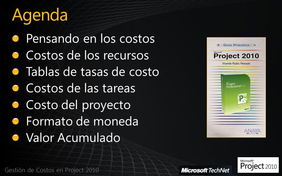Agenda Gestión de Costos en Project 2010